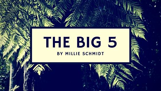 THE BIG5