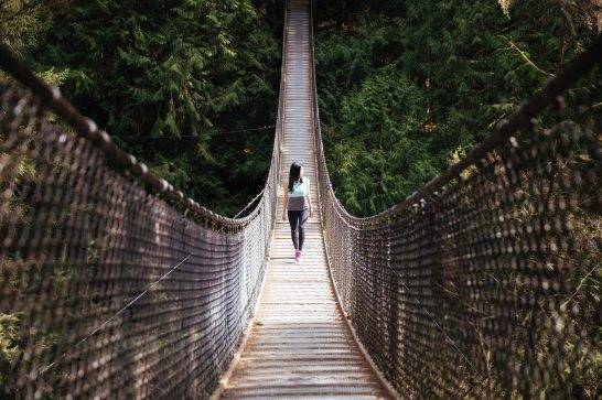 bridge-hanging-outdoors-546913